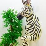 CG zebra